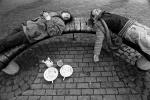 Siesta-2011m..-Andrius-Valickas-Cefyro-Katinas.jpg